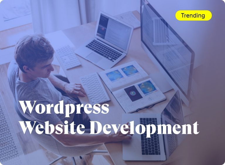 We will Provide WordPress Website Development Service